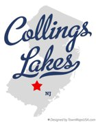 Collings Lakes Log
