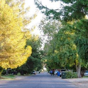 Phoenix Homestead Historic District