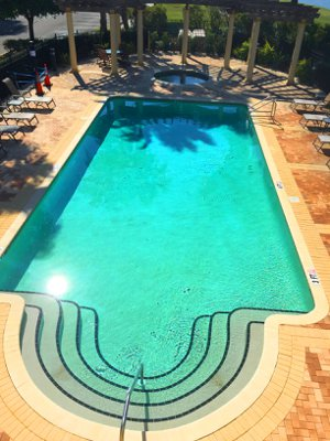 The Tropical Palm Tree Lined Pool at Watercrest in Lakewood Ranch