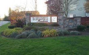 Bluegrass Meadows