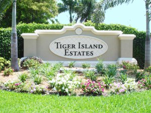 Tiger Island Estates Home Search