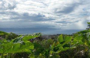 Kaanapali Shores 432
