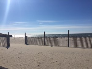Hardings Beach Chatham