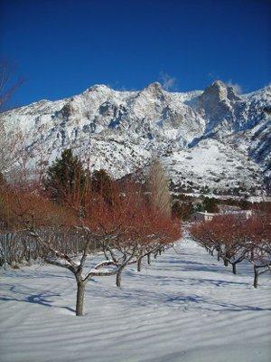 Homes For Sale In Roy Utah