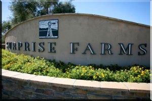 surprise farms for sale, desert home premier