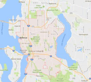 Homes For Sale Bellevue WA