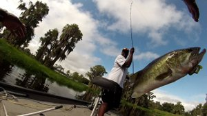 Fishing on Clermont Chain of Lakes