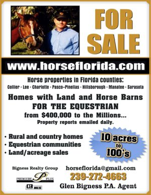 Sarasota Florida horse property for sale