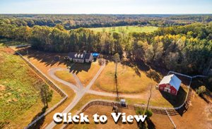 Click to View Gorgeous Quarter Horse Lane Farm for Sale