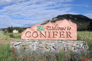 conifer, co