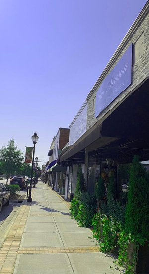 Fountain_inn_downtown_Land_greenville_sc
