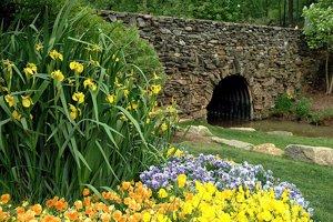 Greenville South Carolina's Reedy River Park