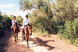 Horse Trails and Equestrian Facilities in Fort Mill