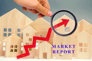 Cameron Trace Market Report