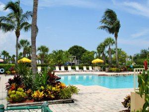 Egret Landing Community Pool