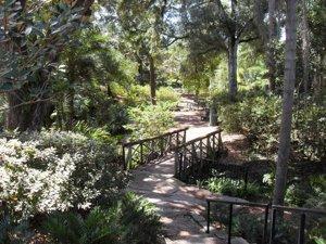 Azalea Park Trails