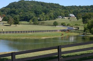 Malden Bridge Homes for Sale New York Equestrian