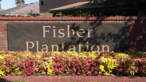 Fisher Plantation, Apopka, FL  32712