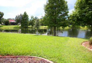 Wonderful Lake Views at Lakewood Ranch