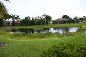 Lake view at Laurel Meadows in Sarasota