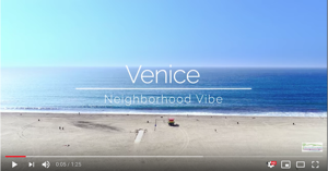 Silicon Beach's Neighborhood Vibe Videos brought to you by Silicon Beach Homes