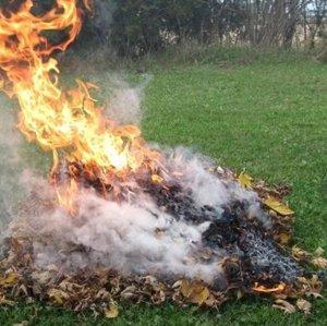 Hanson's Burning Season