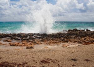 Stuart Houses For Sale Jupiter Island Blowing Rocks
