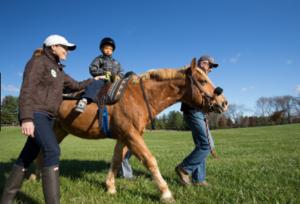 Stuart Houses For Sale Palm City Horseback Riding