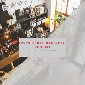 Hotspot of the Week Conservatory