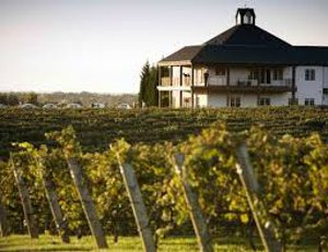 Advance Homes For Sale NC Vineyards