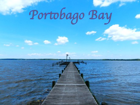Portobago Bay Article Image