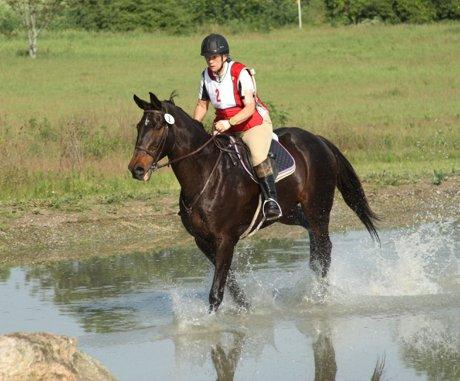 Dayton Ohio Area Horse Park