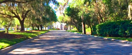 The treelined canopy streets of Rosedale. A gated golf community
