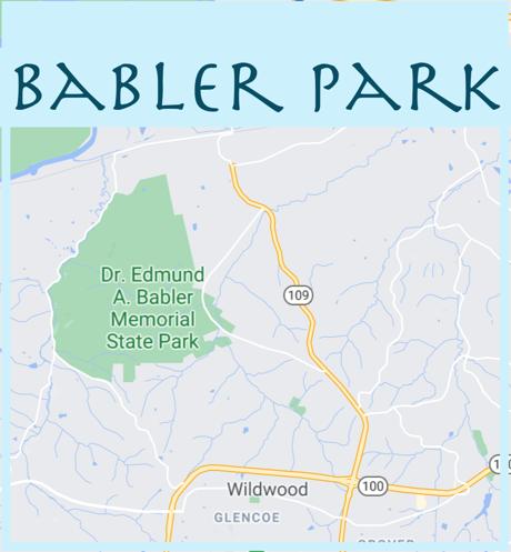 Homes Near Babler Park Trails