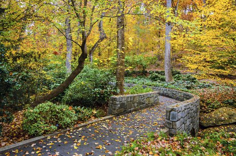 Athens Botanical Gardens - A Great Place to Wander