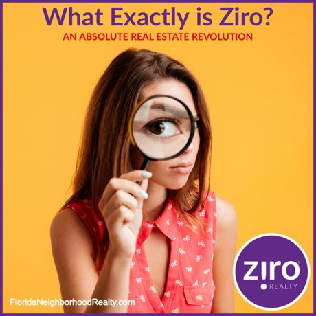 About Ziro Realty