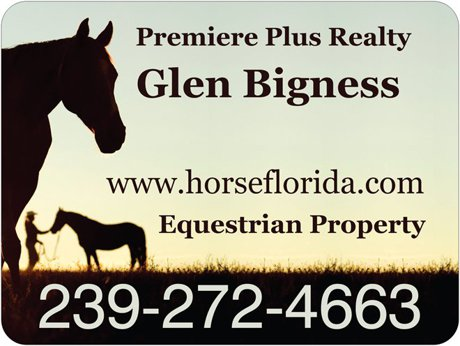 Saddle Creek horse property for sale