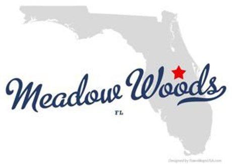 Meadow Woods Florida
