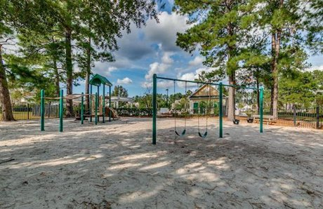 Spring Lake Playground Carolina Forest