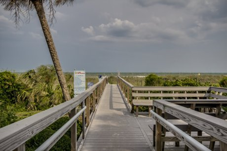 Ocean Forest Boardwalk