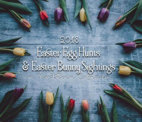 Fort Collins Easter Egg Hunts & Easter Bunny Sightings | MyFortCollinsRealEstate.com | Browse homes for sale, real estate listings, Fort Collins, Loveland, Greeley, Johnstown, Milliken, Eaton, Severance, Wellington, Laporte, Timnath