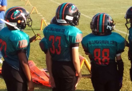 SellingAshburn.com Presents the 2015 AYFL Junior Dolphins
