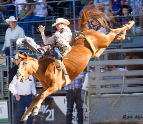 Mona Leonard Reviews the Okeechobee Rodeo