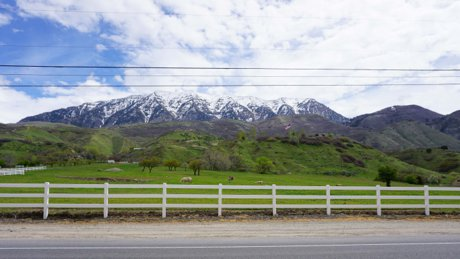 Horse property in Provo Utah