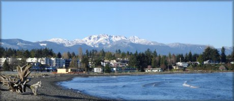 Search homes in Parksville real estate