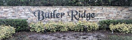 Butler Ridge Homes for Sale Windermere Florida