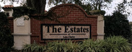 The Estates at Lake Clarice Homes for Sale Windermere Florida