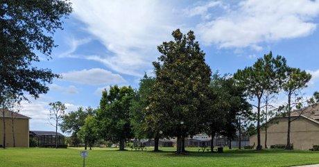 Grande Pines neighborhood park in Windermere FL
