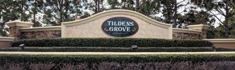 Tildens Grove Homes for Sale Windermere Florida Real Estate