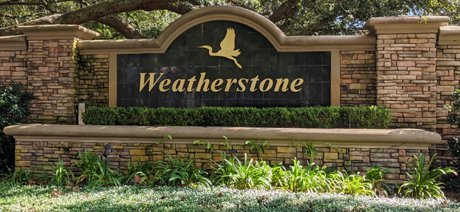Weatherstone Homes for Sale Windermere Florida